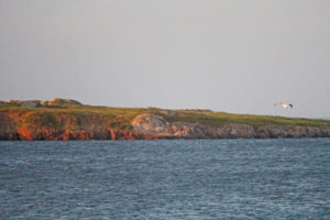 view of island in front of seabreeze campground and cottage nova scotia